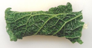 cabbage rolled