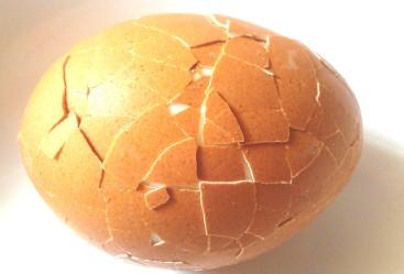 cracked egg