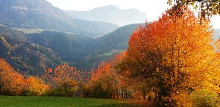 autunnoFC