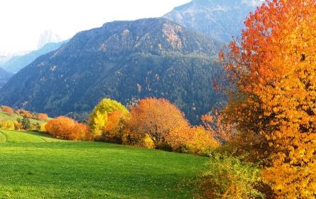 autunnoFC2