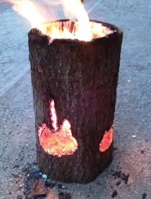 burning log